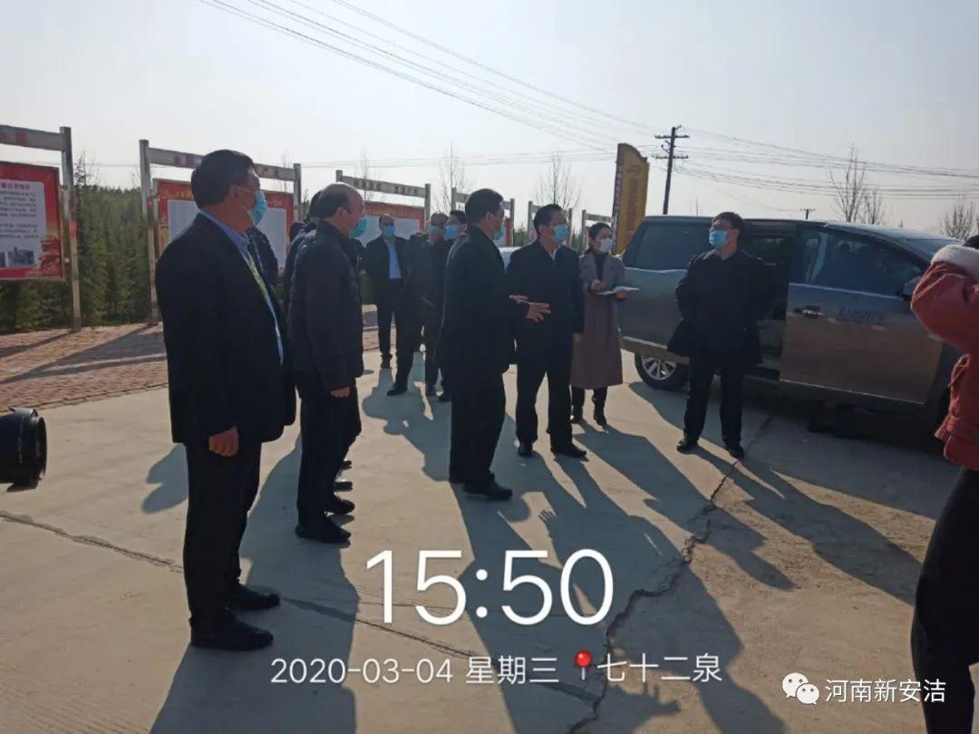 驻马店市领导携汝南县领导莅临新安洁苗木生产基地视察观摩!